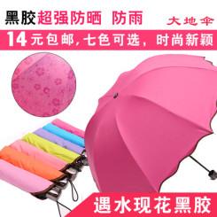 大地伞遇水开花太阳伞 黑胶遮阳防晒伞折叠强防紫外线晴雨伞