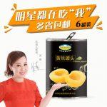 巨鑫源 对开黄桃罐头425g*6罐 出口韩国糖水水果罐头
