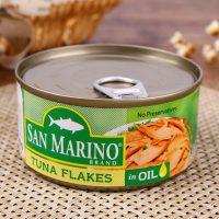 菲律宾进口 圣马利奥 金枪鱼罐头鱼海鲜下饭菜方便即食绿色180g*4罐装