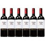 Casillero del Diablo 红魔鬼 卡本妮苏维翁红葡萄酒750ml*6 智利进口