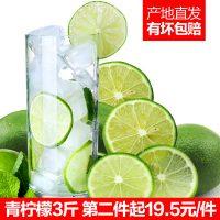 海南 新鲜水果青柠檬3斤 约18个 皮薄酸爽汁多果园现摘