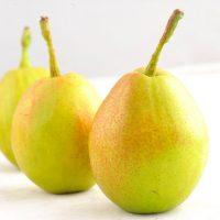 West Orchard西域果园 正宗新疆特产库尔勒香梨 产地直供一级新鲜梨子孕妇水果 5斤装