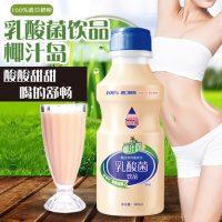 椰汁岛 乳酸菌饮品进口奶粉零脂肪牛奶酸奶饮料340mlx12瓶整箱